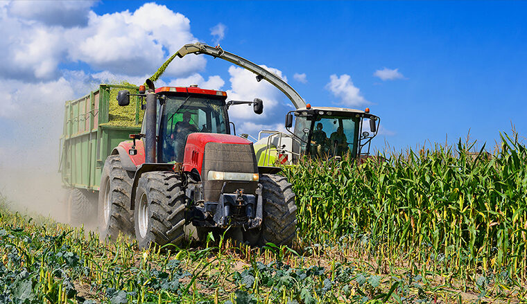 Mexico ready to retaliate by hurting US corn growers