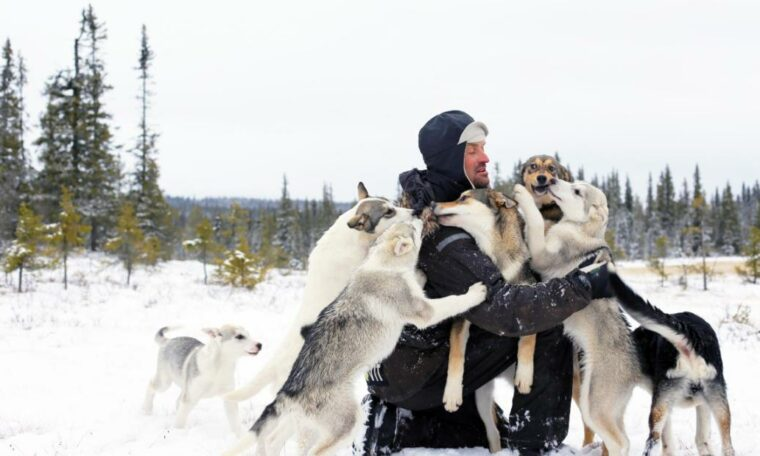 Iditarod: historic plane to transport Thomas Waerner to Norway after the musher was stranded for months in Alaska