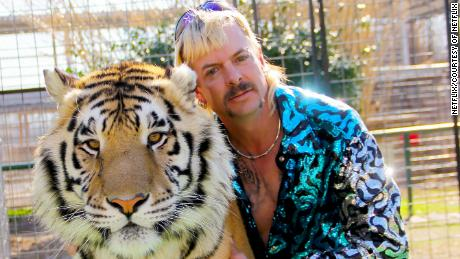 What happened to the big cats of '' Tiger King ''?