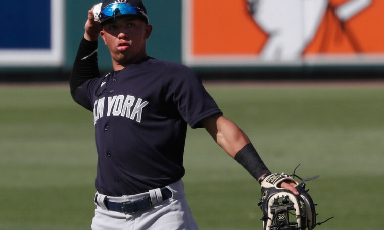 Prospect Oswald Peraza may be Yankees' next homegrown shortstop
