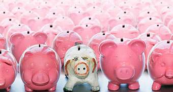 A white piggy bank sits in the centre of the image surrounded by rows and rows of pink piggy banks.