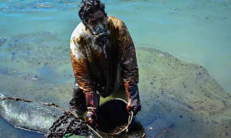 Oil Spill Threatens Unique Animals Of Mauritius : NPR
