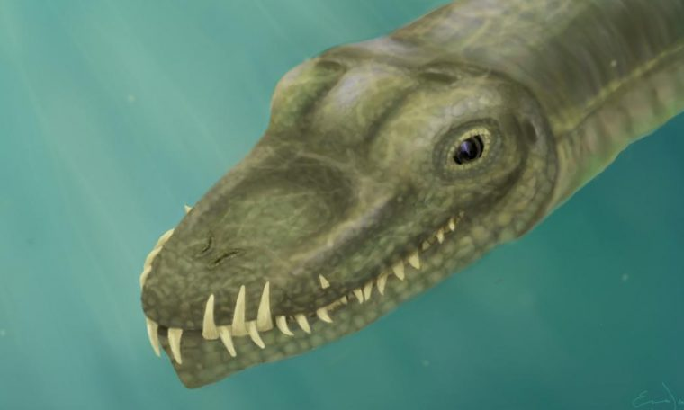 Scientists have unraveled the riddle of a real-life sea monster
