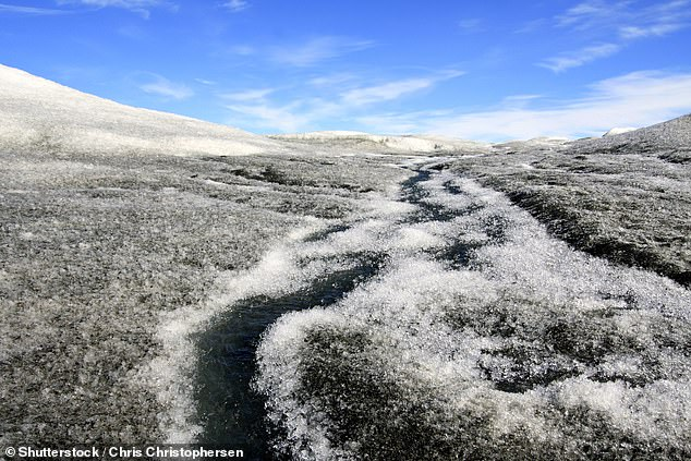 The Greenland ice sheet, pictured, has passed the 'point of no return' ¿ with annual snowfall no longer able to keep up with the amount of ice melting due to global warming (stock image)