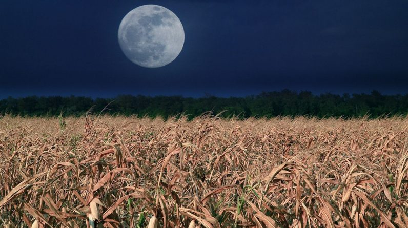A rare blue moon will light up the Halloween night sky
