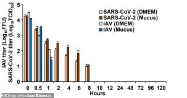 The influenza virus survives on skin cells for less than two hours, while the corona virus survives for up to nine hours (above).