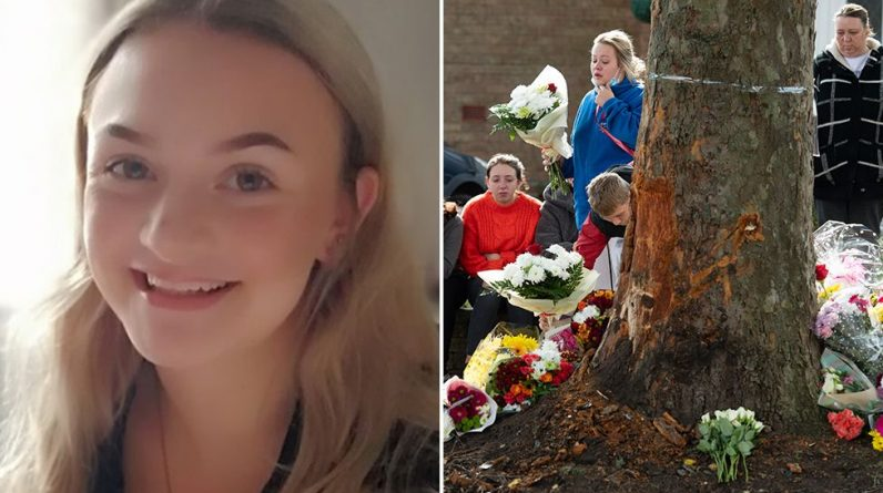 Pictured is Isabelle Floyd who died in a crash that killed four people in Kingswinford, Dudley.