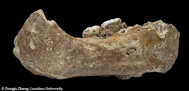 Picture, the Xiahoe mantle remains.  The Denisovan jaw bone was first discovered in 1980 by a local monk
