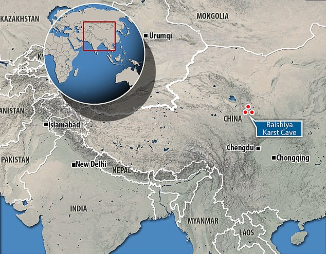 Researchers have identified ancient mitochondrial DNA from the Denisovans, dating to 45,000 years ago, by examining the sediment of the Pyshia Karst Cave, located on a high plateau in Tibet.