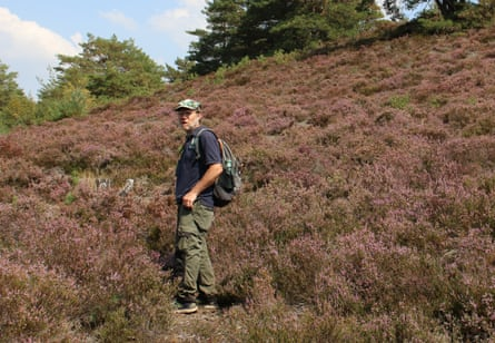 Mike Wade of the Surrey Wildlife Foundation in search of the big fox-spider.