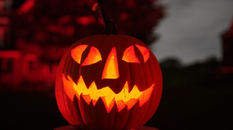 Fun, family-friendly Halloween events planned at Tampa Bay