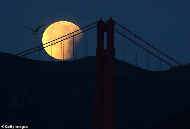 Legend has it that ghosts and spirits are very active on Halloween, but these goliath companies are not only coming out on October 31st - a rare blue moon rising on the same day.  A Blue Moon picture hanging in San Francisco, California in 2018