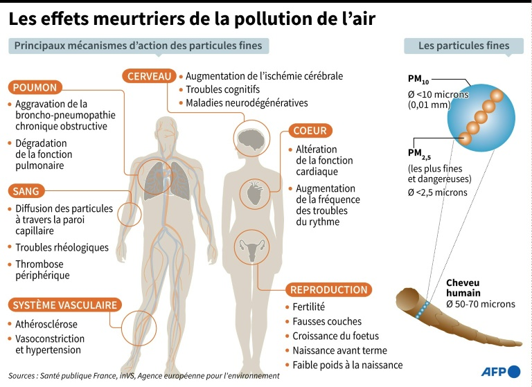 Deadly effects of air pollution (AFP / Archives - Alain BOMMENEL)