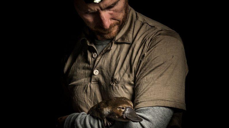 Australia: Scientists mobilize to save Platypus