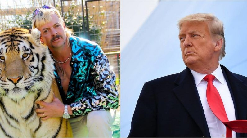 "Donald Trump va-t-il gracier Joe Exotic, la star de Tiger King? ""Je crois que ça va se faire"""