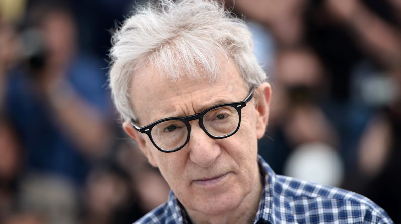 "According to Woody Allen, the documentary ""Allen V. Farrow"" is a ""demolition company"""
