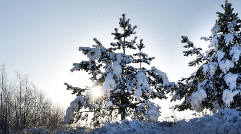 Meteorologist: Low temperatures continue