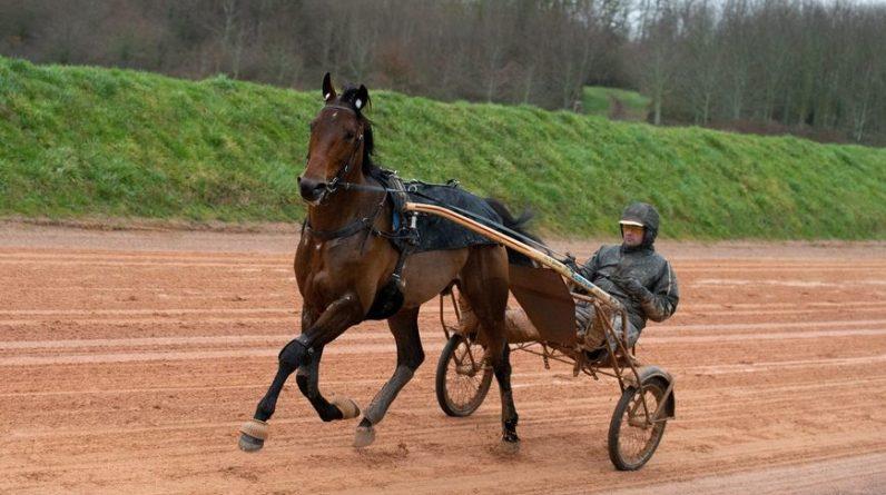Face Time Bourbon, ici à l'entraînement dans l'Orne avec Sébastien Guarato, s'offre un deuxième prix dAmérique