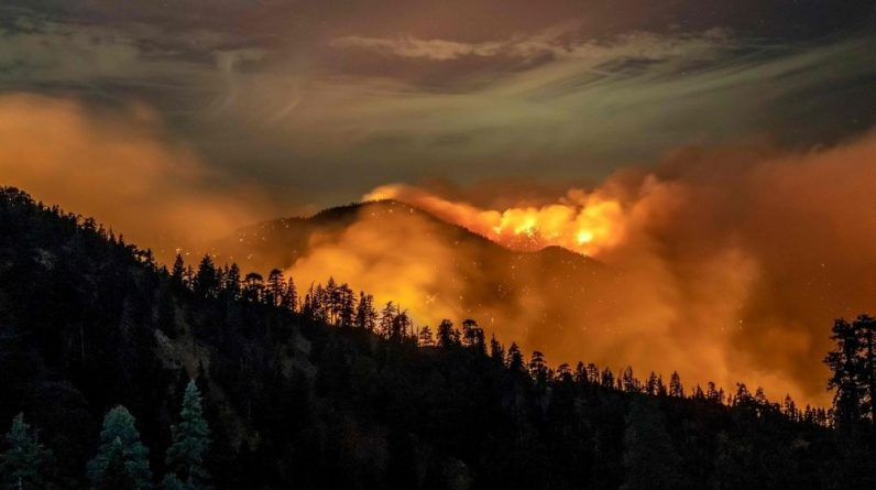 A catastrophic fire linked to global warming for a year