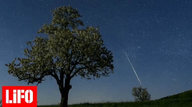 "Amateur astronomers search for a ""precious"" meteorite the size of an apricot that fell in France"
