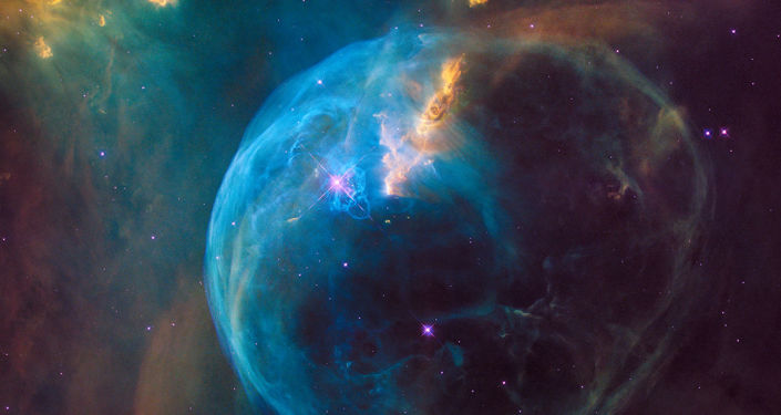 "NASA: Hubble telescope discovers amazing ""animals"" in space ... Video"