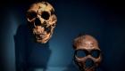 Neanderthals were found to speak like humans