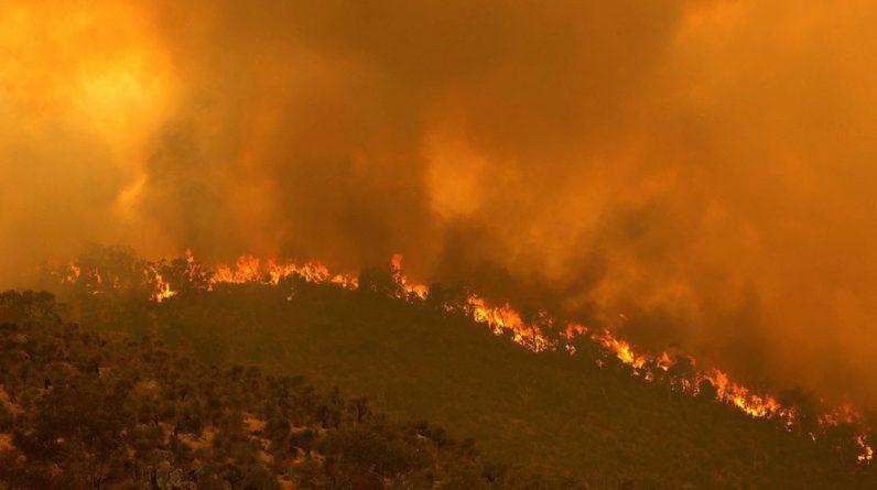 L'Australie a été ravagée en 2019-2020 par d'immenses incendies.