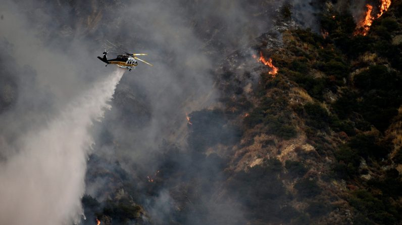 """Fires in Australia, California and Siberia: """"The consequences are devastating"""""""