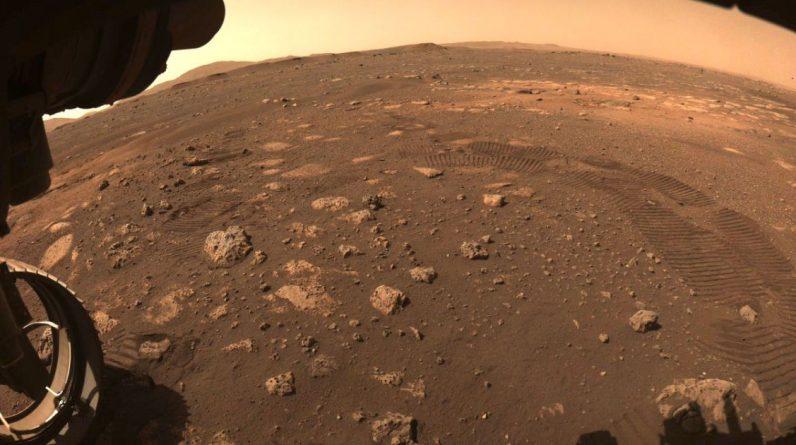 Науковець знайшов на Марсі змій та жуків (фото)