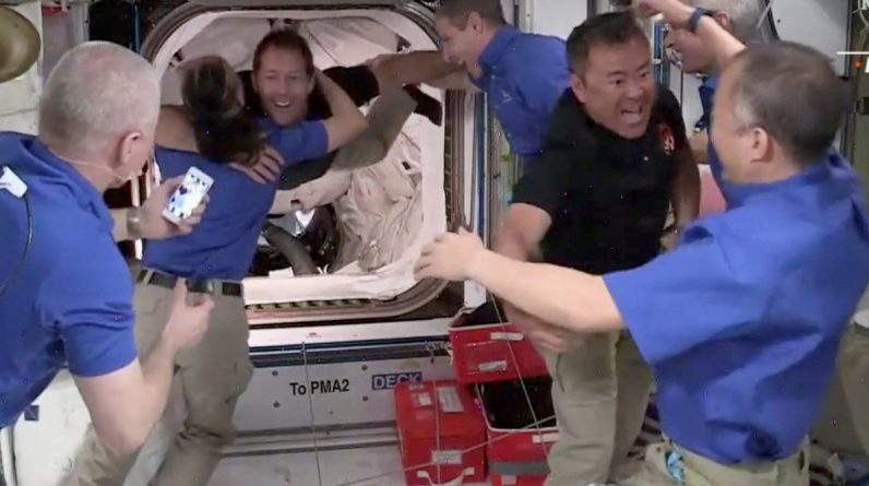 SpaceX capsule delivers four astronauts to SKS / Article / LSMLV
