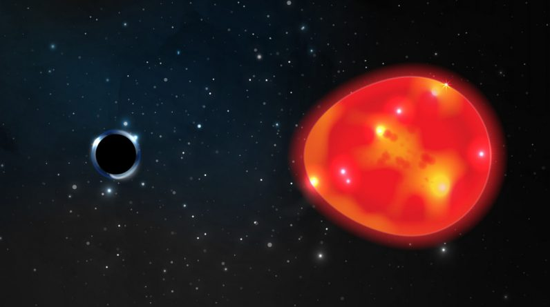 The smallest ever ... Scientists have discovered the closest black hole to Earth