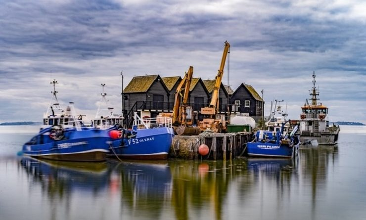 Des bateaux de pêche à Whitstable au Royaume-Uni