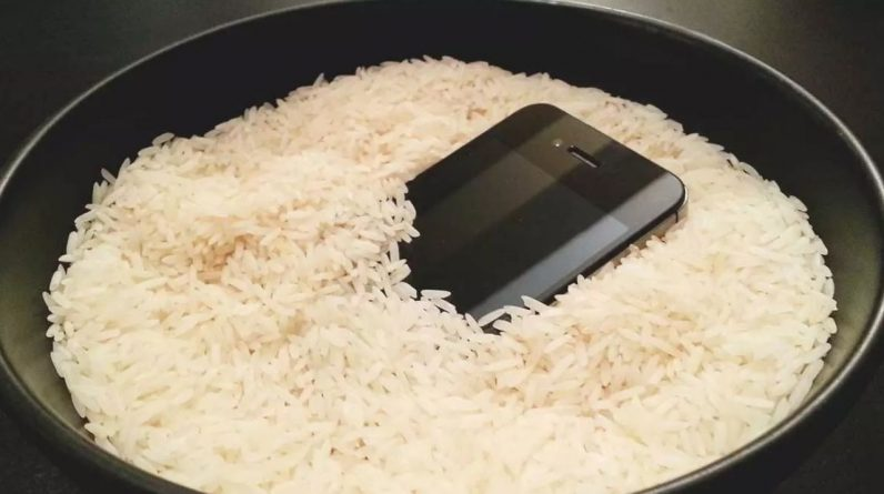 Why is rice used to dry cell phones?