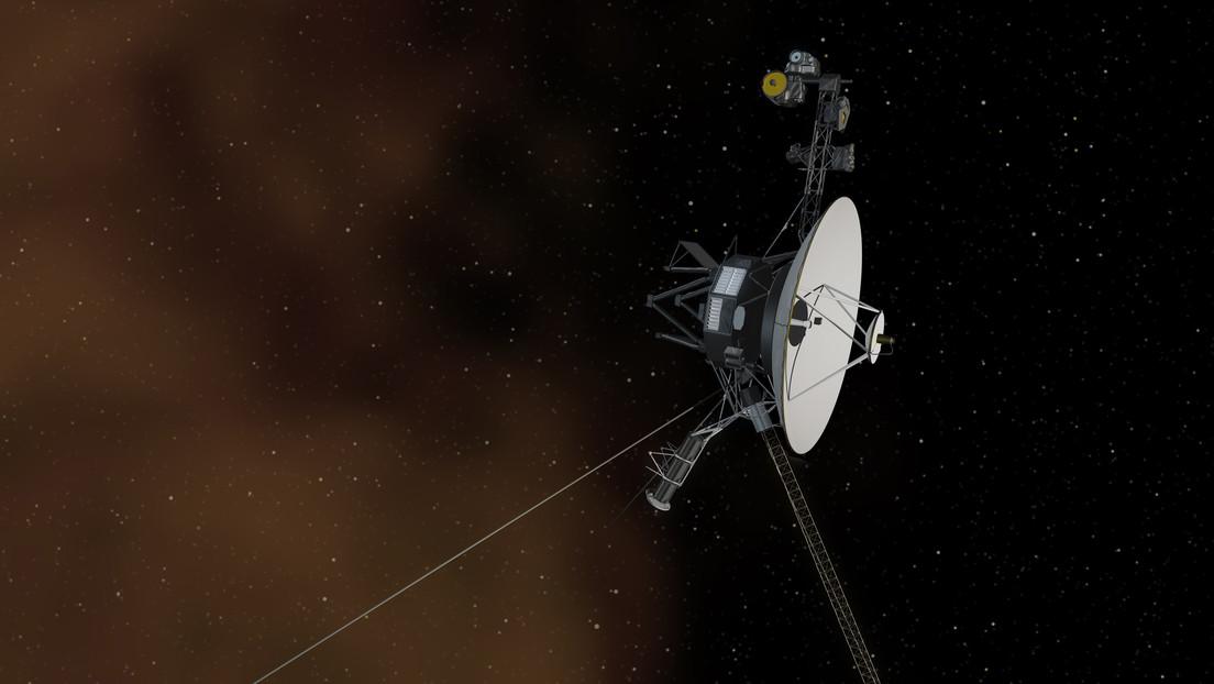Voyager 1 is detected in the standard hum interstellar medium of plasma waves