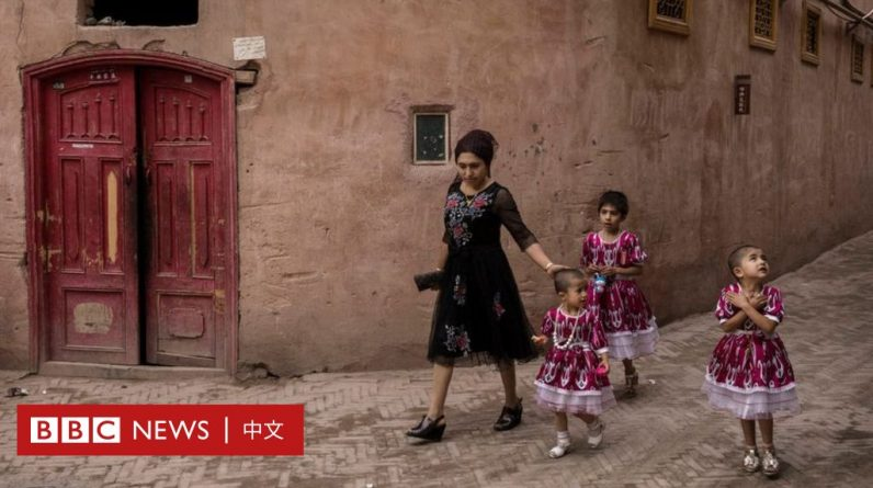 Xinjiang: German scholars say China's birth policy could reduce Uyghur births by millions - BBC News