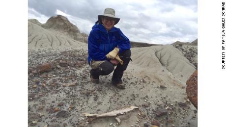 Conrad descubrió el Parque Estatal de Dinosaurios en Alberta, Canadá.