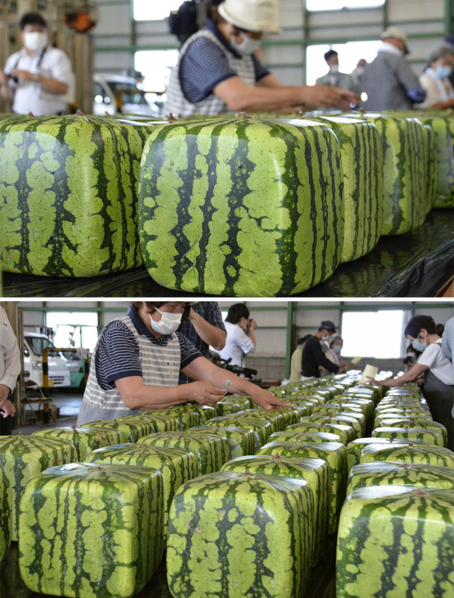 Strange things show that Japan is completely different from the rest - Photo 9.