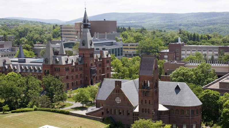 """Cornell's course teaches that black holes can be associated with """"racial blackness"""""""
