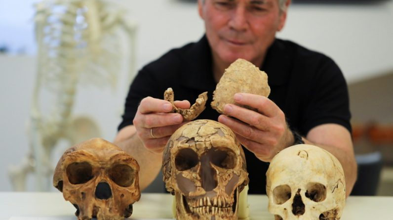 Uncle was discovered in Israel by Neanderthals