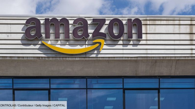 """""""Destroy 130,000 articles a week"""": A former employee charges Amazon"""