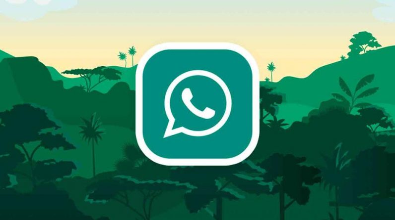 WhatsApp |  Apps will leave you without using your conversations |  Chats |  Applications |  Smartphone |  Cell Phones |  Trick |  Training |  USA |  Spain |  Mexico |  NNDA |  NNNI |  Sports-Play