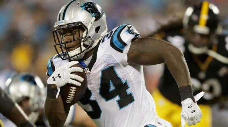 Cameron Artis-Payne: From NFL to Alutes