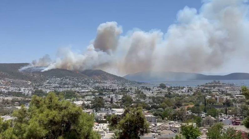 Fighting the fire in five provinces: Flames erupted again in Bodrum
