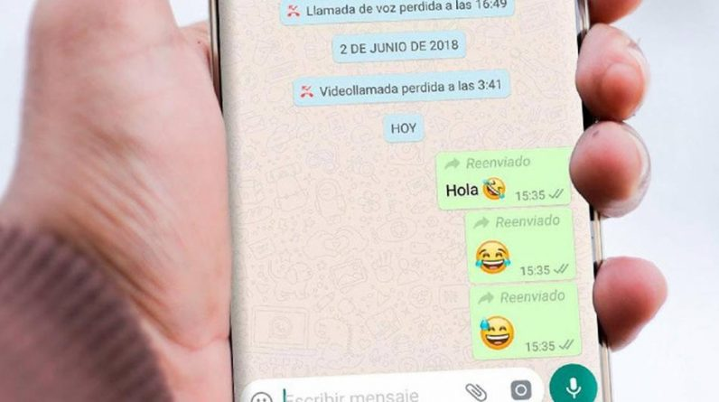WhatsApp: How to share photos and videos without the word 'forward' |  Android |  iOS |  IPhone |  Applications |  Applications |  Smartphone |  Cell Phones |  Viral |  USA |  Spain |  Mexico |  Colombia |  Peru |  nnda |  nnni |  Information