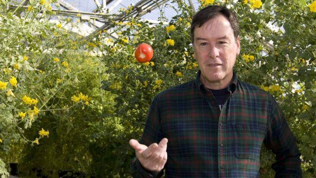 Professor Harry Glee, Department of Horticultural Sciences, University of Florida