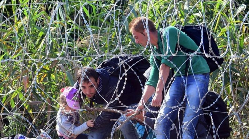 Upside down immigrants are nowhere to be found: there is a plan if more immigrants flee in fear of Belarusian authorities