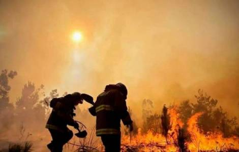 USA / Bolivia - We are called to take care of the land, but in 10 years 58 indigenous areas have been engulfed in fire.