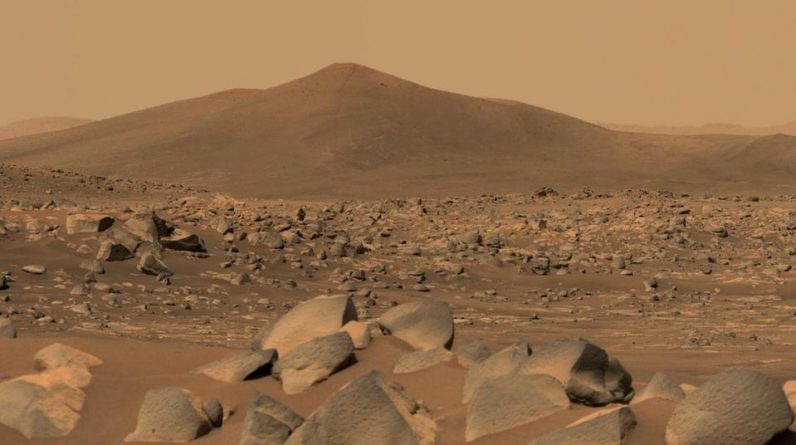 NASA has hired volunteers to simulate life on Mars for a year