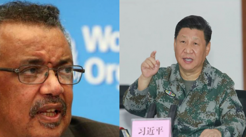 """WHO's new crown virus, China's Communist Party's official media, Dan Desai, China rejects second-stage discovery investigation into """"America's running dog""""    International    Newtalk Newtalk"""