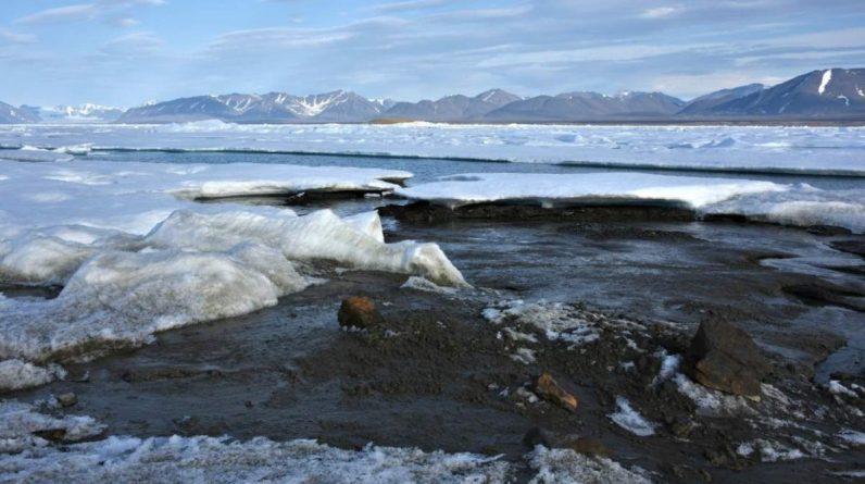Найпівнічніший острів у світі: біля Гренландії науковці зробили випадкове відкриття - 24 Канал